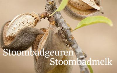 stoombadgeur-saunaspul.nl